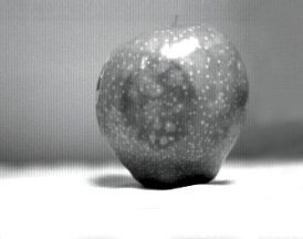 SWIR Imaging of Red Apple