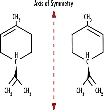 Figure 12: (+)-Limonene, or D-Limonene (left), is associated with the smell of oranges as oranges have a higher concentration of this stereoisomer than the other. (+)-Limonene rotates the orientation of incident light. (-)-Limonene, or L-Limonene (right), is associated with lemons because it is highly concentrated in lemons, and it rotates incident light in the opposite direction as (+)-Limonene.